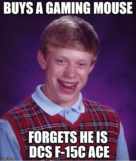 Bad Luck Brian Meme | BUYS A GAMING MOUSE FORGETS HE IS DCS F-15C ACE | image tagged in memes,bad luck brian | made w/ Imgflip meme maker