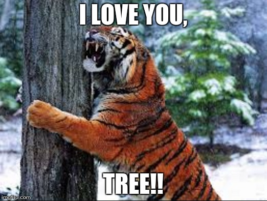Hug me, tree! | I LOVE YOU, TREE!! | image tagged in tree hugger,tiger | made w/ Imgflip meme maker