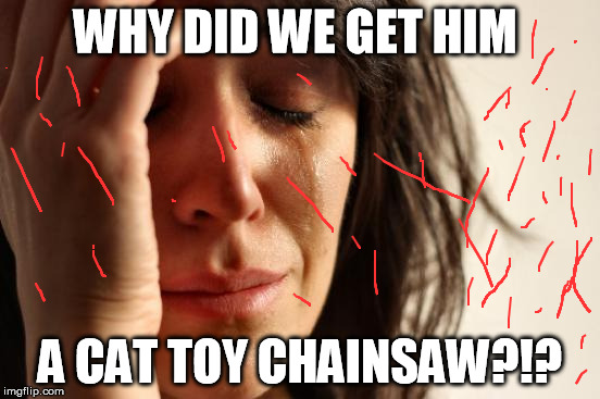 First World Problems Meme | WHY DID WE GET HIM A CAT TOY CHAINSAW?!? | image tagged in memes,first world problems | made w/ Imgflip meme maker