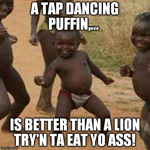 Third World Success Kid Meme | A TAP DANCING PUFFIN,... IS BETTER THAN A LION TRY'N TA EAT YO ASS! | image tagged in memes,third world success kid | made w/ Imgflip meme maker