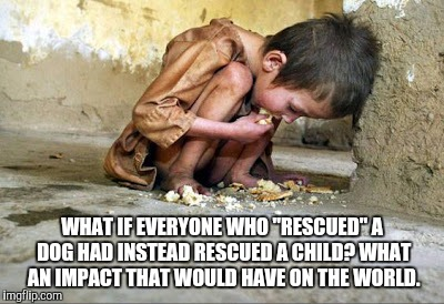 "WHAT IF EVERYONE WHO ""RESCUED"" A DOG HAD INSTEAD RESCUED A CHILD? WHAT AN IMPACT THAT WOULD HAVE ON THE WORLD. 