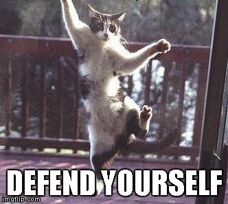 DEFEND YOURSELF | made w/ Imgflip meme maker