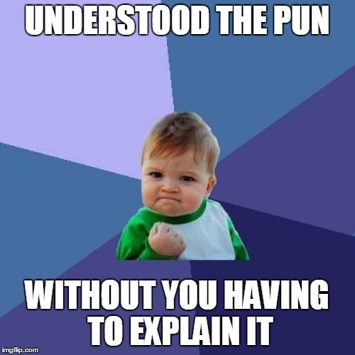 Success Kid Meme | UNDERSTOOD THE PUN WITHOUT YOU HAVING TO EXPLAIN IT | image tagged in memes,success kid | made w/ Imgflip meme maker