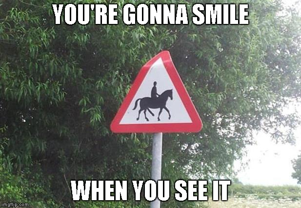 I know I smiled when I saw it | YOU'RE GONNA SMILE WHEN YOU SEE IT | image tagged in horse caution sign,funny signs,memes,funny,funny horse,horse | made w/ Imgflip meme maker