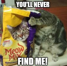 YOU'LL NEVER FIND ME! | made w/ Imgflip meme maker
