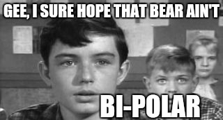 GEE, I SURE HOPE THAT BEAR AIN'T BI-POLAR | made w/ Imgflip meme maker