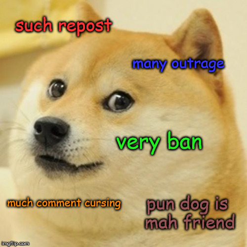 What Is The Much Wow Dog