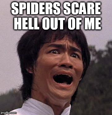 SPIDERS SCARE HELL OUT OF ME | made w/ Imgflip meme maker
