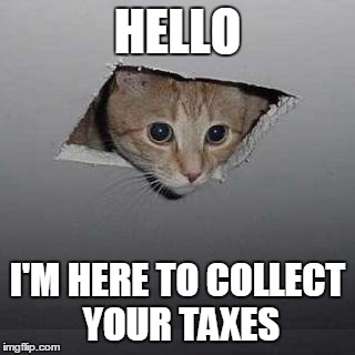 Ceiling Cat |  HELLO; I'M HERE TO COLLECT YOUR TAXES | image tagged in memes,ceiling cat | made w/ Imgflip meme maker
