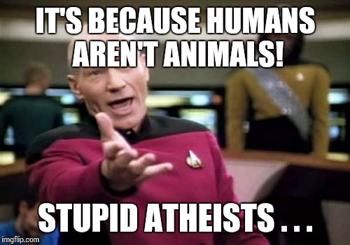 Picard Wtf Meme | IT'S BECAUSE HUMANS AREN'T ANIMALS! STUPID ATHEISTS . . . | image tagged in memes,picard wtf | made w/ Imgflip meme maker