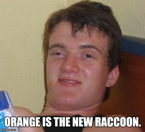 10 Guy Meme | ORANGE IS THE NEW RACCOON. | image tagged in memes,10 guy | made w/ Imgflip meme maker