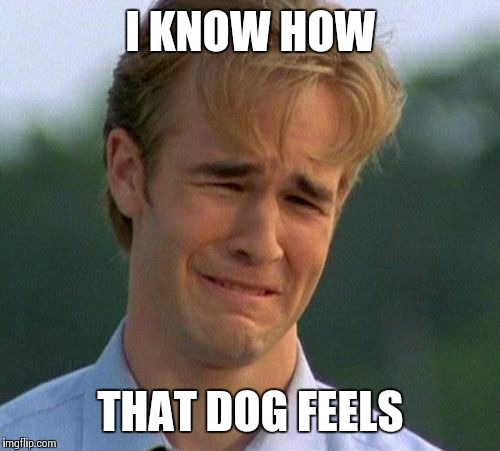 I KNOW HOW THAT DOG FEELS | made w/ Imgflip meme maker