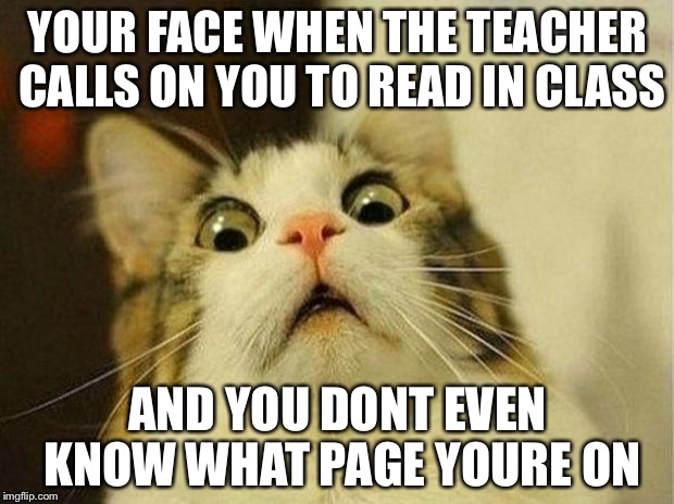 Scared Cat Meme | YOUR FACE WHEN THE TEACHER CALLS ON YOU TO READ IN CLASS AND YOU DONT EVEN KNOW WHAT PAGE YOURE ON | image tagged in memes,scared cat | made w/ Imgflip meme maker