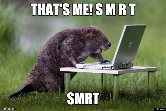 THAT'S ME! S M R T SMRT | made w/ Imgflip meme maker