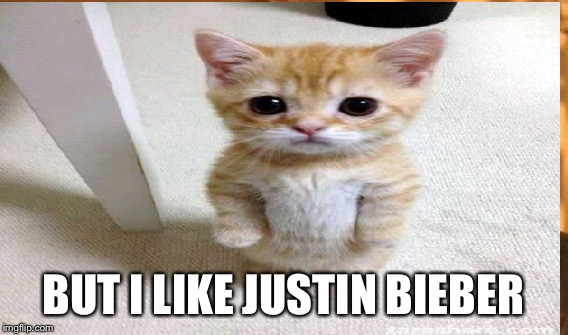 BUT I LIKE JUSTIN BIEBER | made w/ Imgflip meme maker