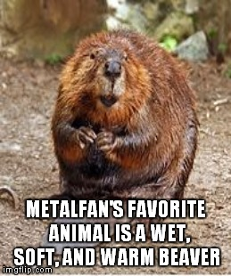 METALFAN'S FAVORITE  ANIMAL IS A WET, SOFT, AND WARM BEAVER | made w/ Imgflip meme maker