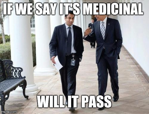 Barack And Kumar 2013 | IF WE SAY IT'S MEDICINAL WILL IT PASS | image tagged in memes,barack and kumar 2013 | made w/ Imgflip meme maker
