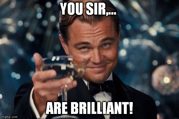 Leonardo Dicaprio Cheers Meme | YOU SIR,... ARE BRILLIANT! | image tagged in memes,leonardo dicaprio cheers | made w/ Imgflip meme maker
