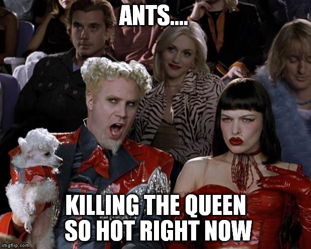 Mugatu So Hot Right Now Meme | ANTS.... KILLING THE QUEEN SO HOT RIGHT NOW | image tagged in memes,mugatu so hot right now | made w/ Imgflip meme maker