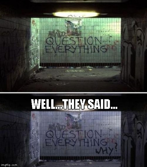 If you question everything, will you ever be sure about anything? | WELL...THEY SAID... | image tagged in funny graffiti,graffiti,memes,funny,question everything | made w/ Imgflip meme maker