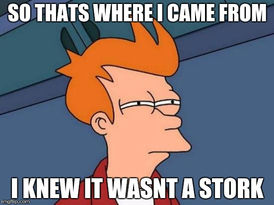 Futurama Fry | SO THATS WHERE I CAME FROM I KNEW IT WASNT A STORK | image tagged in memes,futurama fry | made w/ Imgflip meme maker