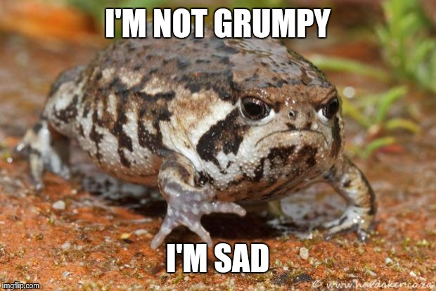 Grumpy Toad | I'M NOT GRUMPY I'M SAD | image tagged in memes,grumpy toad | made w/ Imgflip meme maker