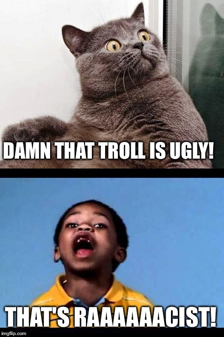 DAMN THAT TROLL IS UGLY! THAT'S RAAAAAACIST! | made w/ Imgflip meme maker