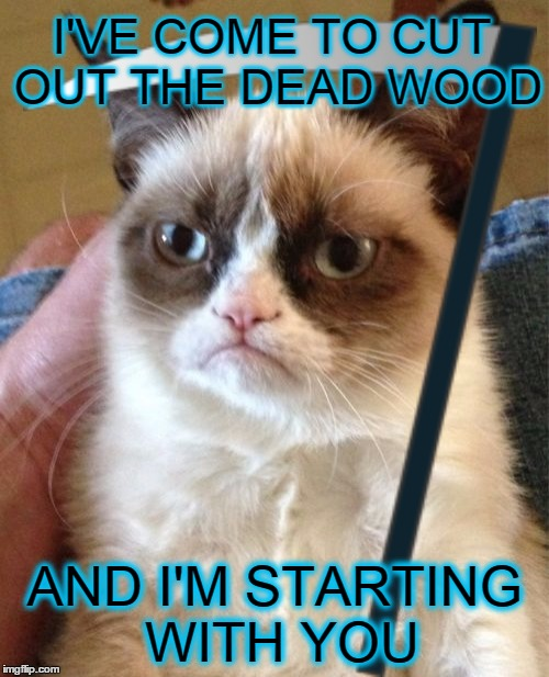Samarra, Samarra!  I love ya, Samarra!  You're always a day away! | I'VE COME TO CUT OUT THE DEAD WOOD AND I'M STARTING WITH YOU | image tagged in memes,grumpy cat,funny,why meme when you can maim,maim | made w/ Imgflip meme maker