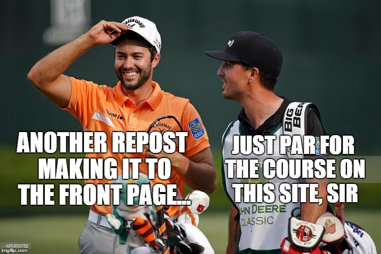 JUST PAR FOR THE COURSE ON THIS SITE, SIR AN0THER REPOST MAKING IT TO THE FRONT PAGE... | image tagged in smiling caddy laughing golfer | made w/ Imgflip meme maker