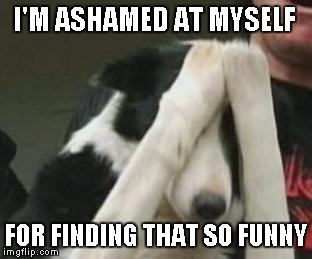 I'M ASHAMED AT MYSELF FOR FINDING THAT SO FUNNY | made w/ Imgflip meme maker