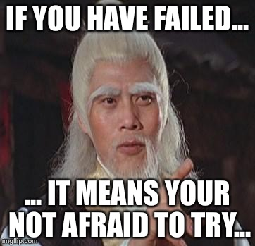 Wise Kung Fu Master | IF YOU HAVE FAILED... ... IT MEANS YOUR NOT AFRAID TO TRY... | image tagged in wise kung fu master | made w/ Imgflip meme maker