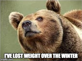 Smug Bear | I'VE LOST WEIGHT OVER THE WINTER | image tagged in memes,smug bear | made w/ Imgflip meme maker