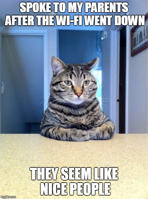 Take A Seat Cat Meme | SPOKE TO MY PARENTS AFTER THE WI-FI WENT DOWN THEY SEEM LIKE NICE PEOPLE | image tagged in memes,take a seat cat | made w/ Imgflip meme maker