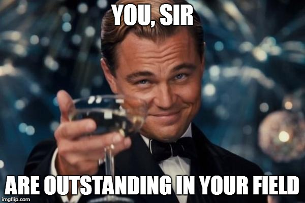 Leonardo Dicaprio Cheers Meme | YOU, SIR ARE OUTSTANDING IN YOUR FIELD | image tagged in memes,leonardo dicaprio cheers | made w/ Imgflip meme maker