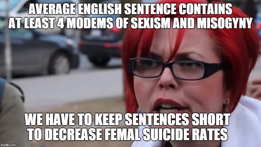AVERAGE ENGLISH SENTENCE CONTAINS AT LEAST 4 MODEMS OF SEXISM AND MISOGYNY WE HAVE TO KEEP SENTENCES SHORT TO DECREASE FEMAL SUICIDE RATES | made w/ Imgflip meme maker