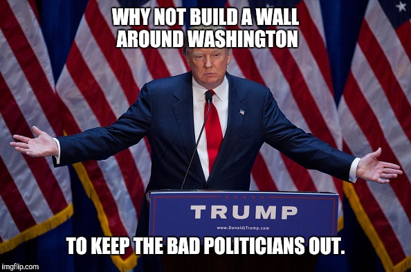 Donald Trump | WHY NOT BUILD A WALL AROUND WASHINGTON TO KEEP THE BAD POLITICIANS OUT. | image tagged in donald trump | made w/ Imgflip meme maker