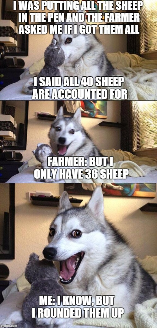 Bad Pun Dog Meme | I WAS PUTTING ALL THE SHEEP IN THE PEN AND THE FARMER ASKED ME IF I GOT THEM ALL ME: I KNOW, BUT I ROUNDED THEM UP FARMER: BUT I ONLY HAVE 3 | image tagged in memes,bad pun dog,funny memes,funny meme,meme,funny | made w/ Imgflip meme maker