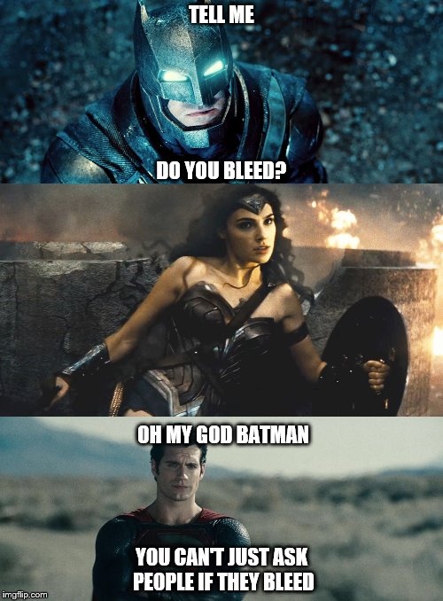 Oh my god Karen - Batman v Superman edition | TELL ME YOU CAN'T JUST ASK PEOPLE IF THEY BLEED DO YOU BLEED? OH MY GOD BATMAN | image tagged in batman v superman | made w/ Imgflip meme maker