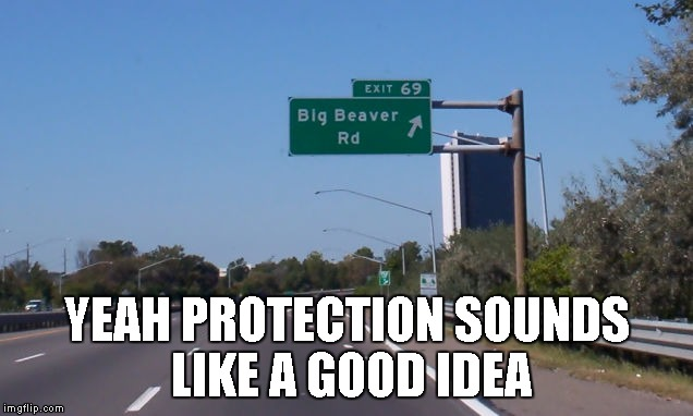 YEAH PROTECTION SOUNDS LIKE A GOOD IDEA | made w/ Imgflip meme maker