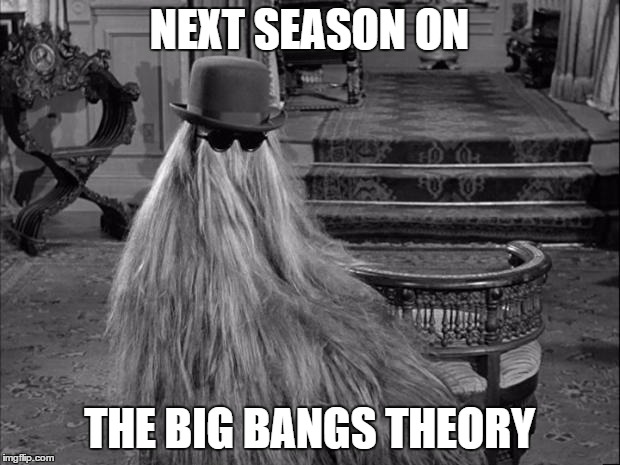 Cousin IT |  NEXT SEASON ON; THE BIG BANGS THEORY | image tagged in cousin it | made w/ Imgflip meme maker