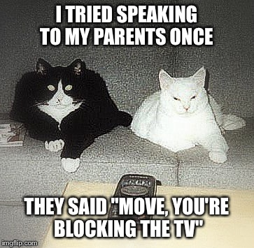 "I TRIED SPEAKING TO MY PARENTS ONCE THEY SAID ""MOVE, YOU'RE BLOCKING THE TV"" 