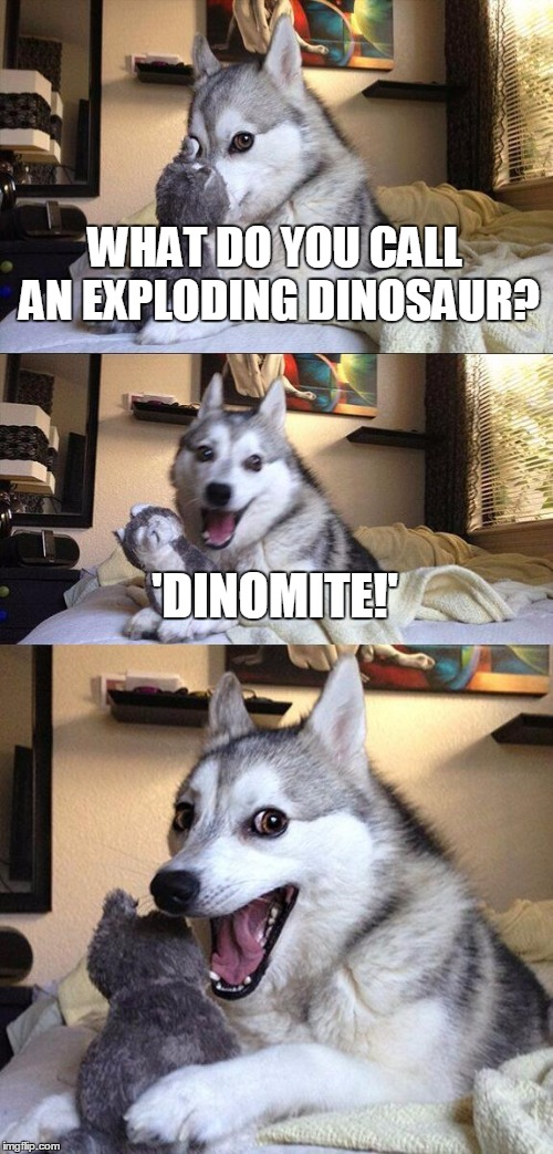 Bad Pun Dog Meme |  WHAT DO YOU CALL AN EXPLODING DINOSAUR? 'DINOMITE!' | image tagged in memes,bad pun dog | made w/ Imgflip meme maker