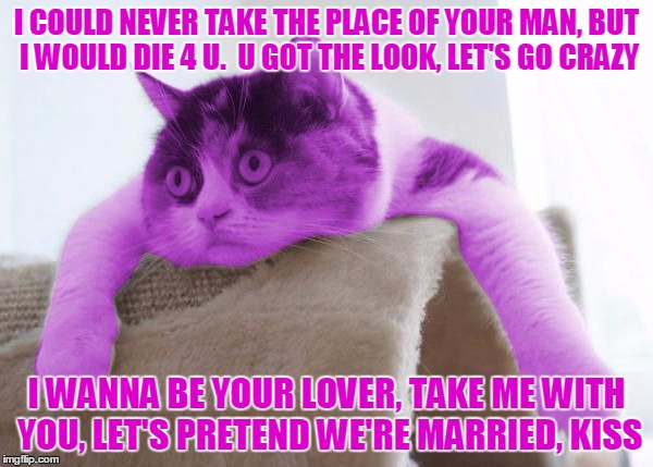 What your cat is really thinking... delirious? | I COULD NEVER TAKE THE PLACE OF YOUR MAN, BUT I WOULD DIE 4 U.  U GOT THE LOOK, LET'S GO CRAZY I WANNA BE YOUR LOVER, TAKE ME WITH YOU, LET' | image tagged in raycat stare,memes | made w/ Imgflip meme maker