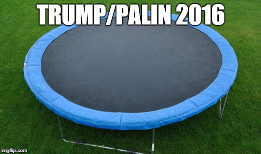 trampoline |  TRUMP/PALIN 2016 | image tagged in trampoline | made w/ Imgflip meme maker