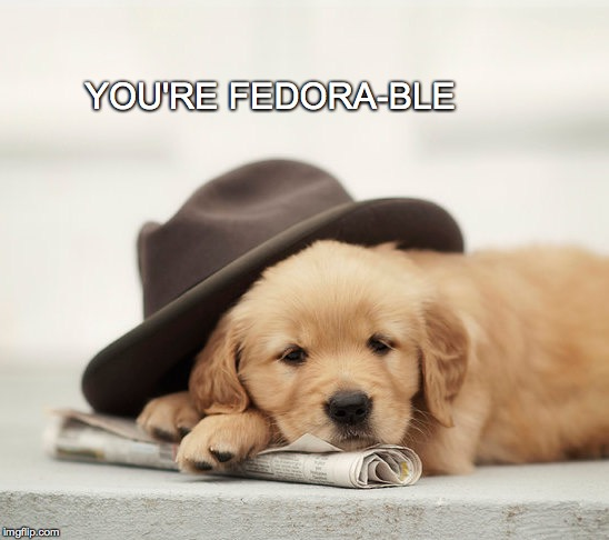 Yes. Yes I am.  | YOU'RE FEDORA-BLE | image tagged in fedora,puppy,adorable,fedorable | made w/ Imgflip meme maker