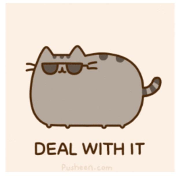 Pusheen Deal With It Meme Generator - Imgflip