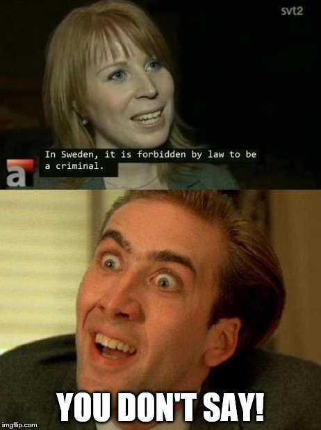 Those Swedes | YOU DON'T SAY! | image tagged in duh,nick cage,memes | made w/ Imgflip meme maker