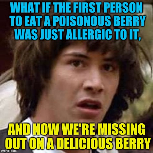 Don't test out this theory though... | WHAT IF THE FIRST PERSON TO EAT A POISONOUS BERRY WAS JUST ALLERGIC TO IT, AND NOW WE'RE MISSING OUT ON A DELICIOUS BERRY | image tagged in memes,conspiracy keanu,berry,poison | made w/ Imgflip meme maker