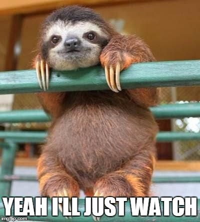 cute-sloth | YEAH I'LL JUST WATCH | image tagged in cute-sloth | made w/ Imgflip meme maker