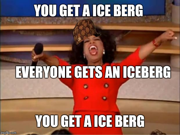 Oprah You Get A Meme | YOU GET A ICE BERG YOU GET A ICE BERG EVERYONE GETS AN ICEBERG | image tagged in memes,oprah you get a,scumbag | made w/ Imgflip meme maker